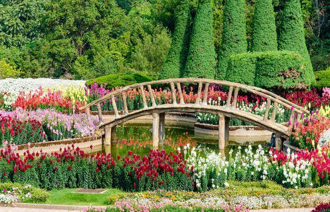 Duży mostek w ogrodzie