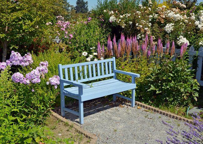 Mała ławka ogrodowa