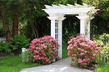 Pergola ozdobna w ogrodzie