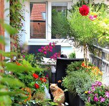 Balkon kwiatowy