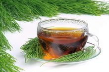 Herbata ze skrzypu polnego