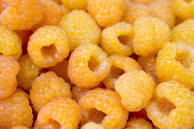 Żółte maliny