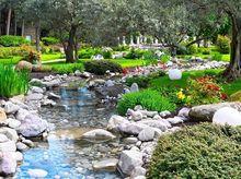 Strumyk w ogrodzie botanicznym