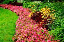 Aranżacja ogrodu