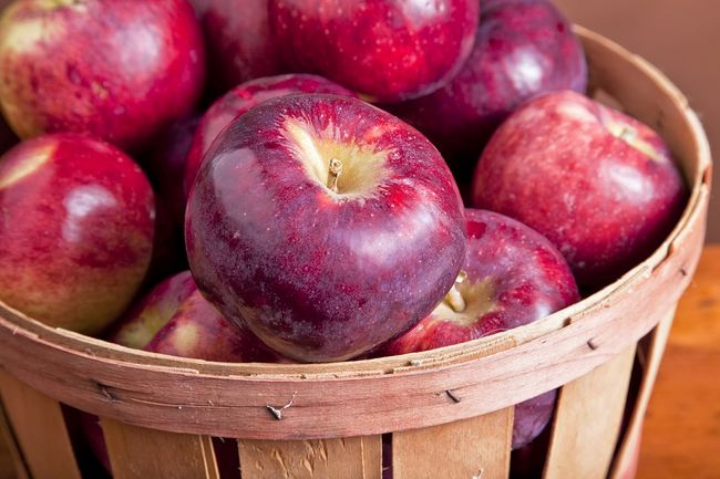 Jabłka odmiany Cortland