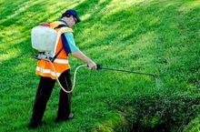 Chemiczne odchwaszczanie trawnika