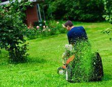 Koszenie trawnika