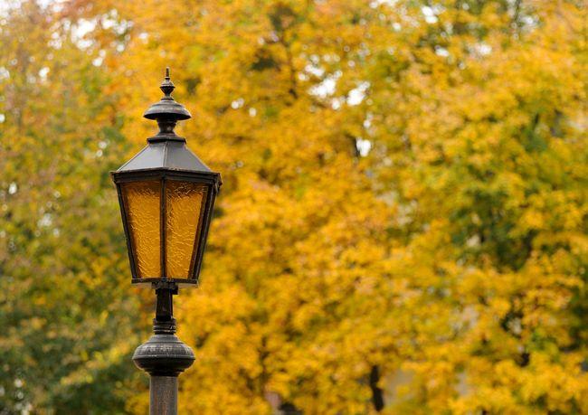 Klasyczna latarnia parkowa