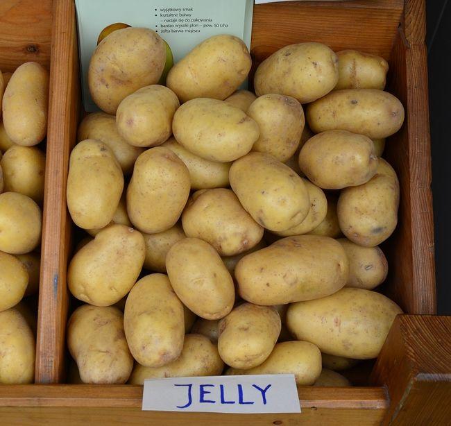 Ziemniaki Jelly
