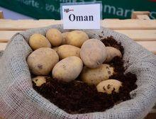 Ziemniaki Oman