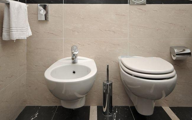 Bidety łazienkowe Coraz Bardziej Popularne Galeria I Zdjęcia