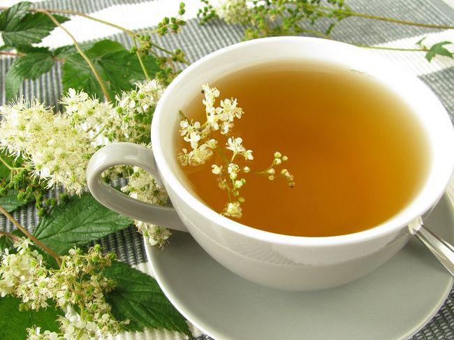 Herbata z wiązówki błotnej