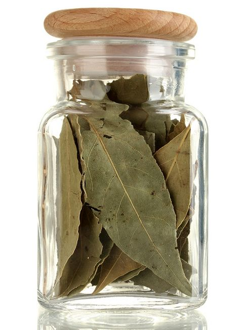 Wawrzyn szlachetny - liście laurowe