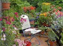 Balkon kwiatowy - idealny do czytania