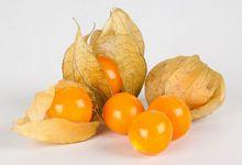 Owoce miechunki