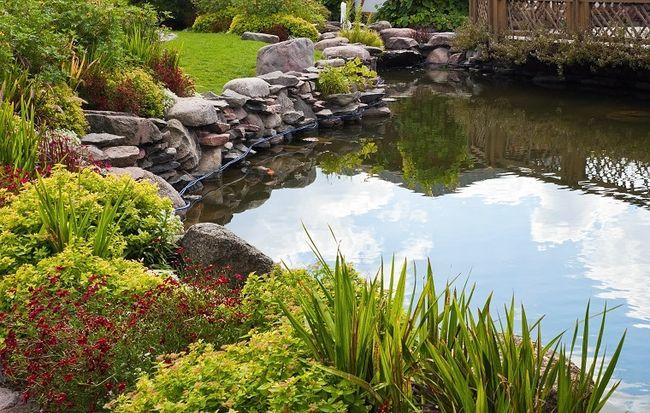 Woda W Ogrodzie Bogactwo Form Do Wyboru