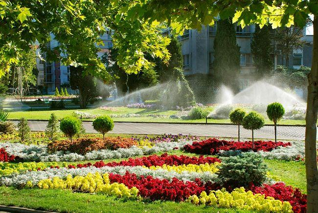 Automatyczne nawadnianie ogrodu