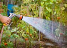 Tradycyjne nawadnianie ogrodu