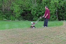 Wertykulacja trawnika