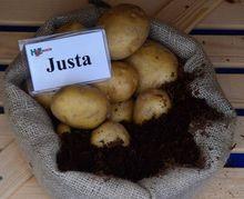 Ziemniaki Justa