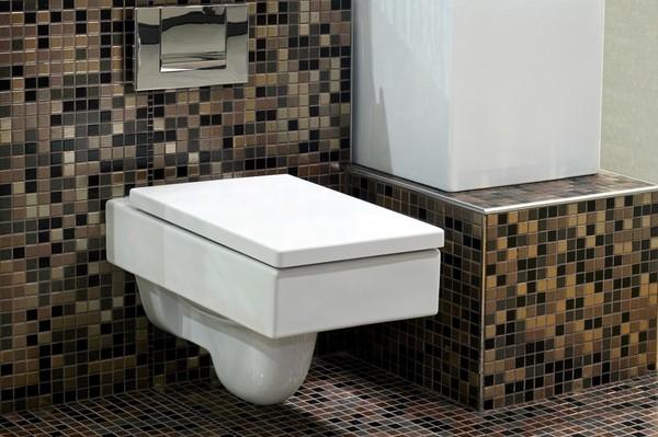 Muszla Klozetowa Nieodzowny Element łazienki
