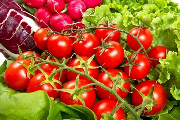 4040cb2946 Uprawa pomidorów koktajlowych z sukcesem