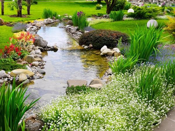Sadzawka ogrodowa - rodzaje, planowanie i budowa, pielęgnacja