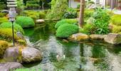 Oczka wodne - galeria zdjęć efektownych aranżacji