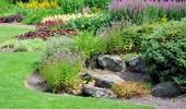 Skalniaki i ogrody skalne - galeria zdjęć ciekawych propozycji