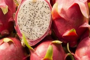 Smoczy Owoc, Pitaja - ciekawostki, właściwości i uprawa